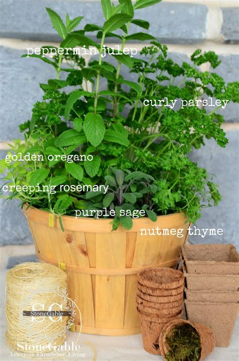 Kitchen Herb Garden In A Basket  Stonegable