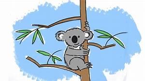 How to draw a cute cartoon Koala - YouTube