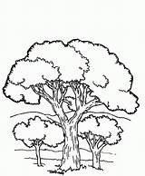 Coloring Mountains Mountain Trees Popular sketch template