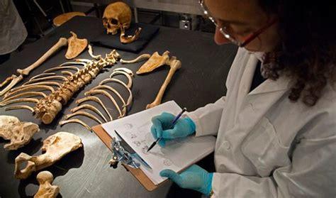 forensic anthropologist degreequerycom