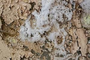 Comment Isoler Un Mur En Pierre Humide : comment assainir un mur humide el gant comment isoler un ~ Premium-room.com Idées de Décoration