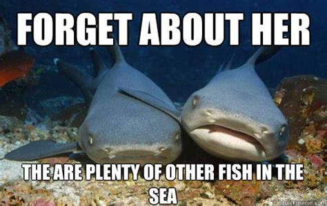 Fish In The Sea Meme - forget about her the are plenty of other fish in the sea compassionate shark friend quickmeme