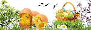 Panier Oeufs De Paques : joyeuses paques page 2 ~ Melissatoandfro.com Idées de Décoration