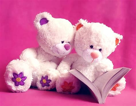 teddy bears teddy pictures hd images free desktop
