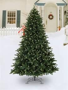 decorated trees tree
