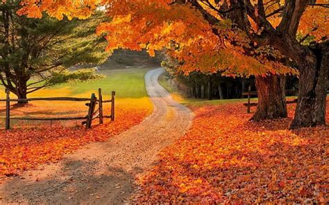 Beautiful Autumn Wallpapers by Hd Photos For Free