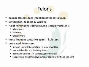 Paronychia Vs Felon Finger Infection