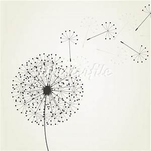 Dandelion Seed Drawing