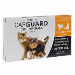 best flea for cats the best flea treatment for cats for 2017 expert reviews