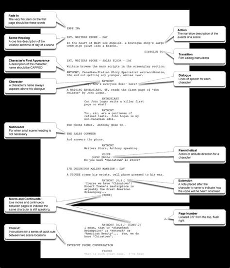 screenplay template word shatterlioninfo