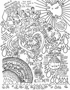 Heart And Circulatory System Coloring Page