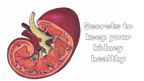 secrets    kidney healthy