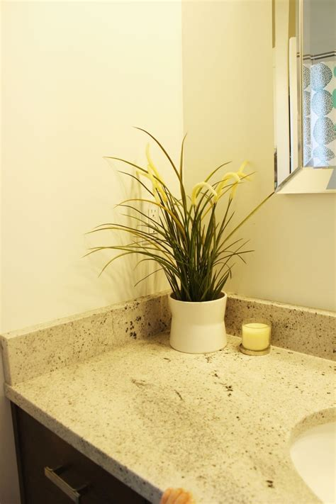 decorate  bathroom  clutter