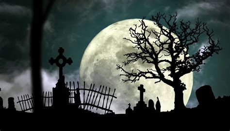 free halloween graveyard cemetery stock video footage