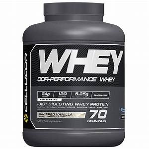 Best Whey Proteins For Women In 2020  Review  U0026 Guide
