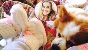 Rebecca Kratz Wiki : s e schn ffelei rebecca kratz bringt baby hund ~ Watch28wear.com Haus und Dekorationen