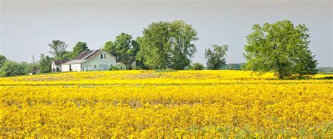 Find the best farm scene wallpaper on getwallpapers. Spring Farm Scene Photograph by Brian Mollenkopf