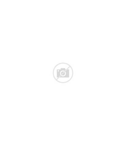Onesie Zebra Romper Unisex Cotton Sleeve Orange