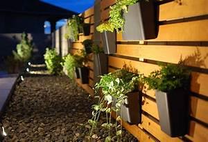 How to install low voltage outdoor lighting the garden