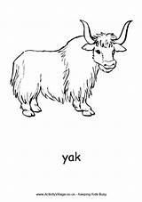 Yak Yaks Yancy Phonics sketch template