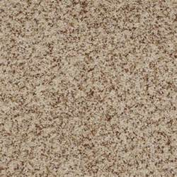 shaw flooring driving 9 best shaw carpet neutral colors images on