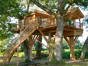 Comment Faire Une Cabane Dans Les Arbres : cabane arbre cabane pinterest les cabanes cabanes et les arbres ~ Melissatoandfro.com Idées de Décoration
