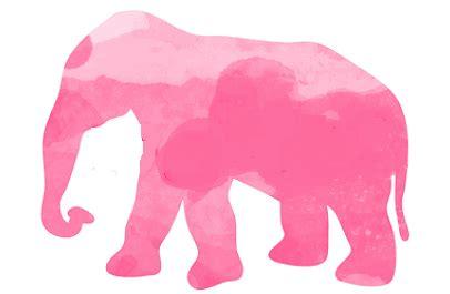 elephant gif  tumblr