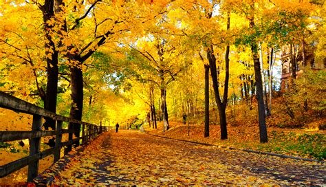 autumn visitfinland com