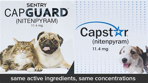 generic alternatives  capstar  dogs  cats