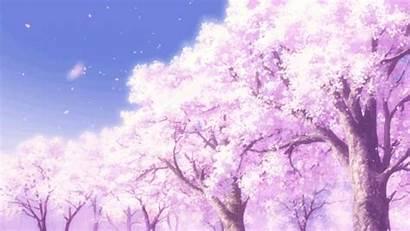 Blossom Cherry Gifs Memo Pad Kamisama Heavens