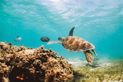 Queensland: Places to visit and things to do - Tourism ...
