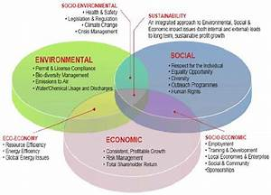Key elements of sustainable development Source: Verify ...
