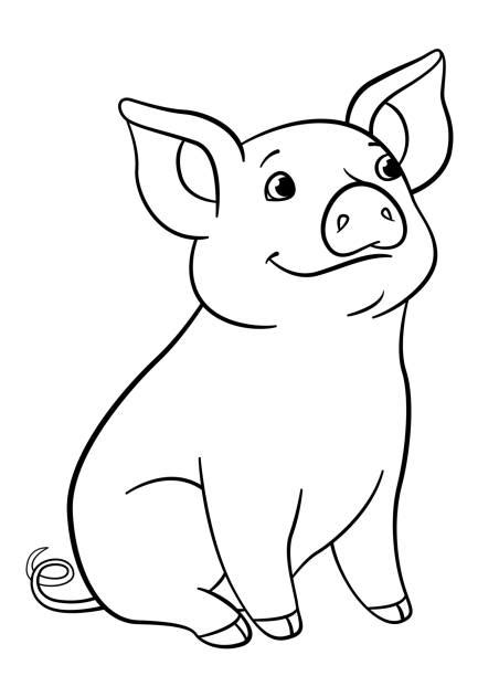 Cute Pig Coloring Pages Illustrations Royalty Free Vector