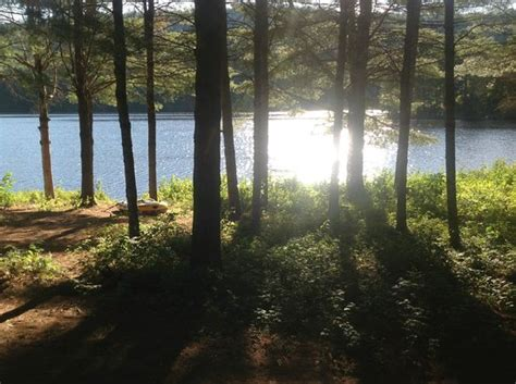 maine lakeside cabins view from my cabin picture of maine lakeside cabins