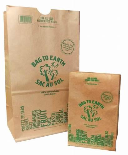 Paper Bags Earth Bag Waste Papier Fuites