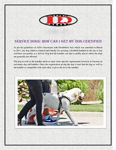 service dogs how can i my dog certified