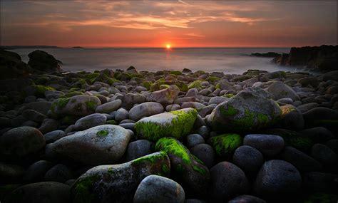 bretagne forum fuer naturfotografen
