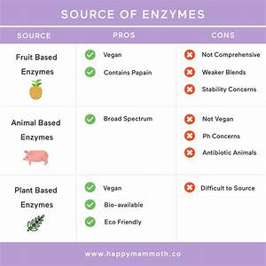 Digestive Enzymes  The Ultimate Research Driven Guide
