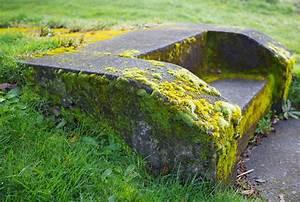 Produit de Traitement anti lichen, algues et mousse Toiture, terrasse, pierre, terre cuite