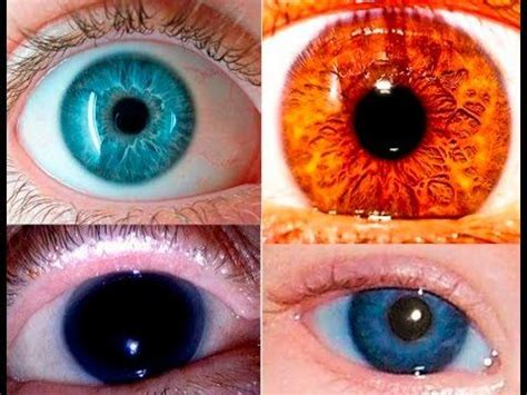 the rarest eye color 10 best ideas about rarest eye color on green