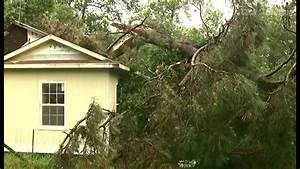Woman killed, 2 injured after tornado knocks trees onto ...