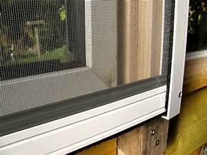 Mücken In Der Wohnung Was Tun : 3 tipps gegen m cken in der wohnung der gartenratgeber ~ Whattoseeinmadrid.com Haus und Dekorationen