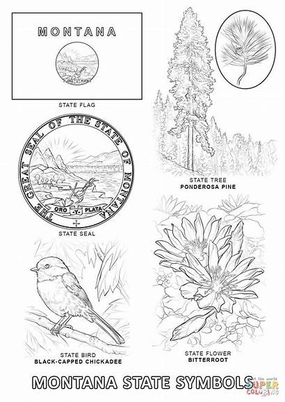 Montana Coloring Symbols Pages State Printable 1020