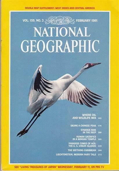 Geographic National Magazine 1981 Wildlife February Magazines