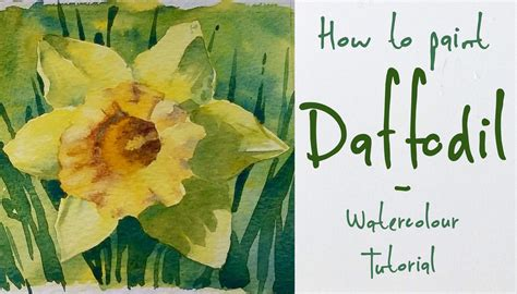 how to paint a l daffodil watercolor www pixshark com images galleries