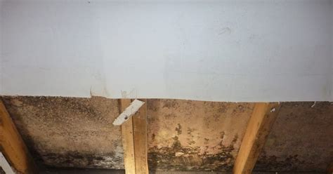 ?The Basement Smell?: Why Basement Air Is Unhealthy