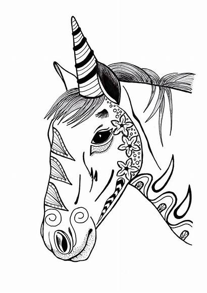 Coloring Unicorn Adult Pages Pdf