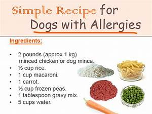 Simple Recipe for Dogs with Allergies Flickr Photo