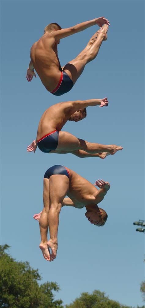 Incoming Stanford freshman diver a real Tiger when it ...
