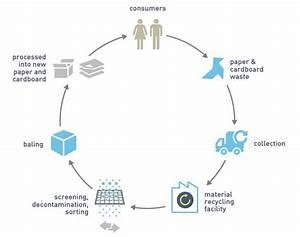 Paper  U0026 Cardboard Recycling